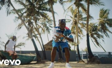 VIDEO: DJ Spinall ft. Fireboy DML – Sere