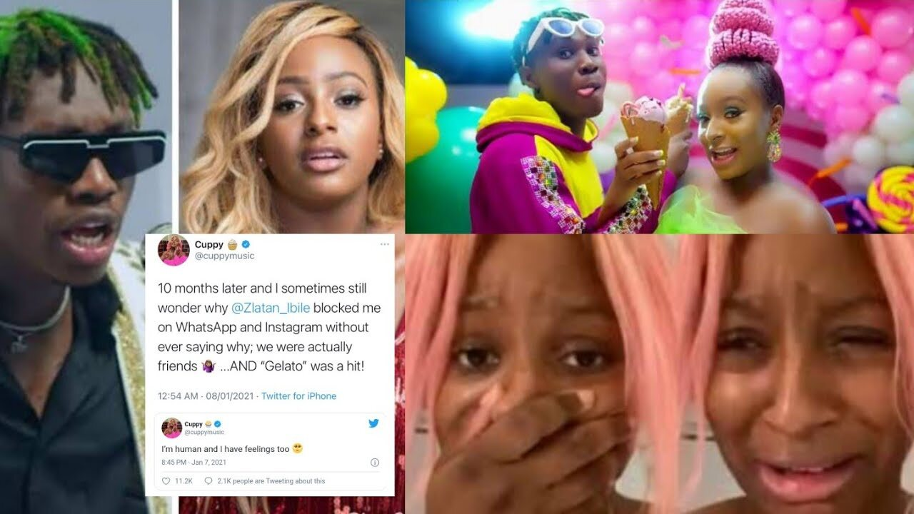 HUGE SHOCK as Davido's PA Finally Reveals the Bad Behaviour From DJ Cuppy that Made Zlatan Block Her [Photo and Video Evidence]