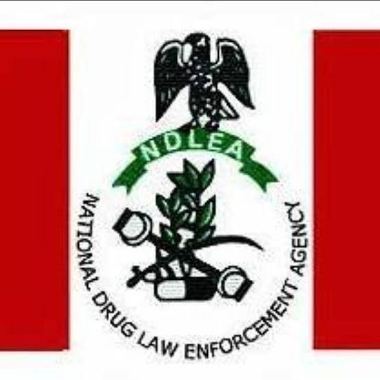 Ogun now dumping ground for drugs – NDLEA laments, arrests 22 suspects