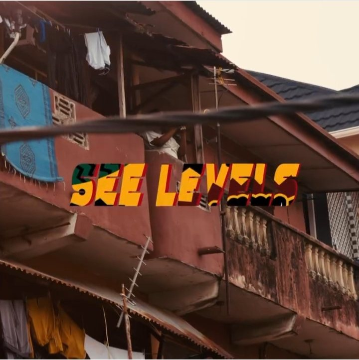 Backroad Gee ft. Olamide - See Levels